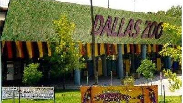 达拉斯动物园门票,达拉斯达拉斯动物园攻略/地址