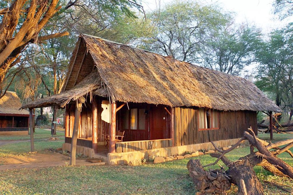 肯尼亚--动物的王国.长颈鹿庄园和samburu