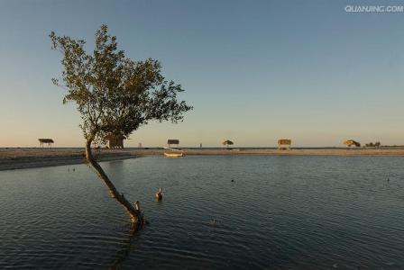 昂達西貝國家森林保護區  Andasibe Reserve   -4