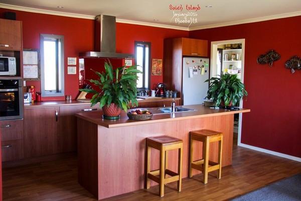 客廳的開放式廚房,家里還有中式炒鍋和筷子.