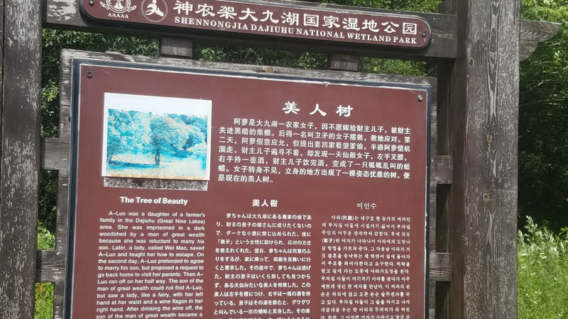 宜昌至神农架、林州6天自驾游详细攻略郑州安阳攻略景点图片