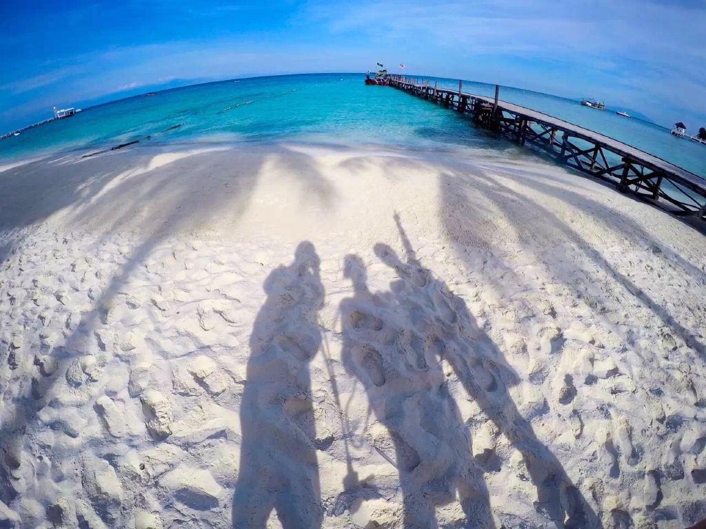 在停泊岛追海龟,在热浪岛