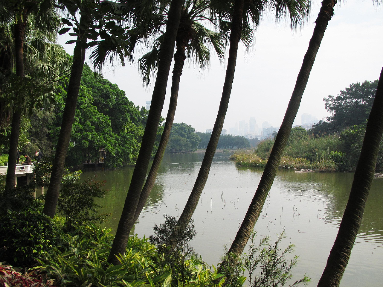 流花湖公园    -3