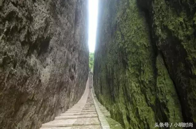 南平旅游景点-武夷山攻略攻略【携程攻略】酷游记雅图片