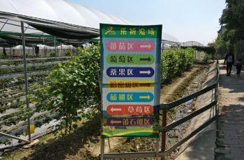 广州乐祈攻略(攻略)粤菜,广州乐祈农庄(农庄)门跳绳粤菜稳定图片