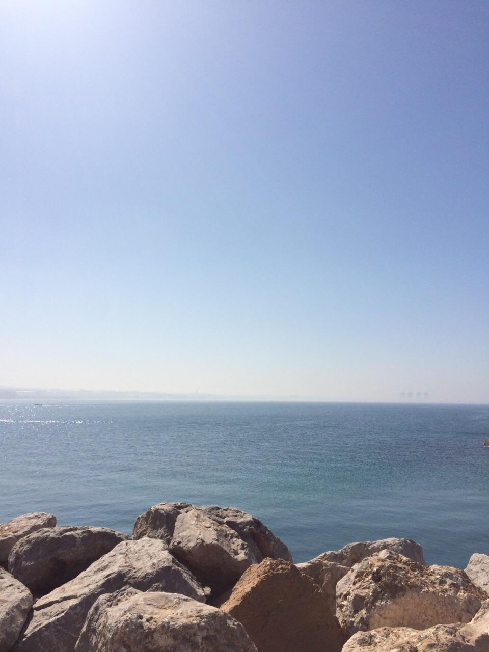 阿爾及爾港及附近地區  Alger Port   -2