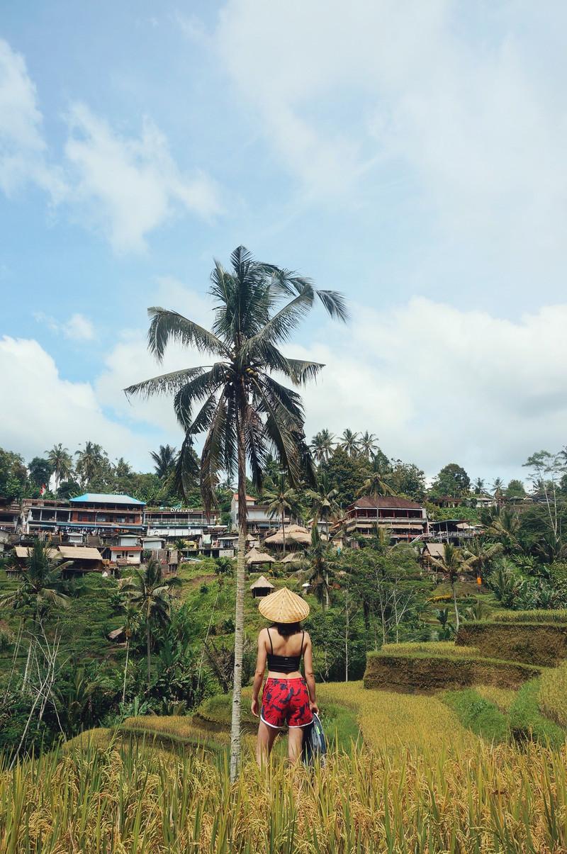 牛肉夫妻出逃记 | 赶在巴厘岛火山喷发前回来了,不然就.