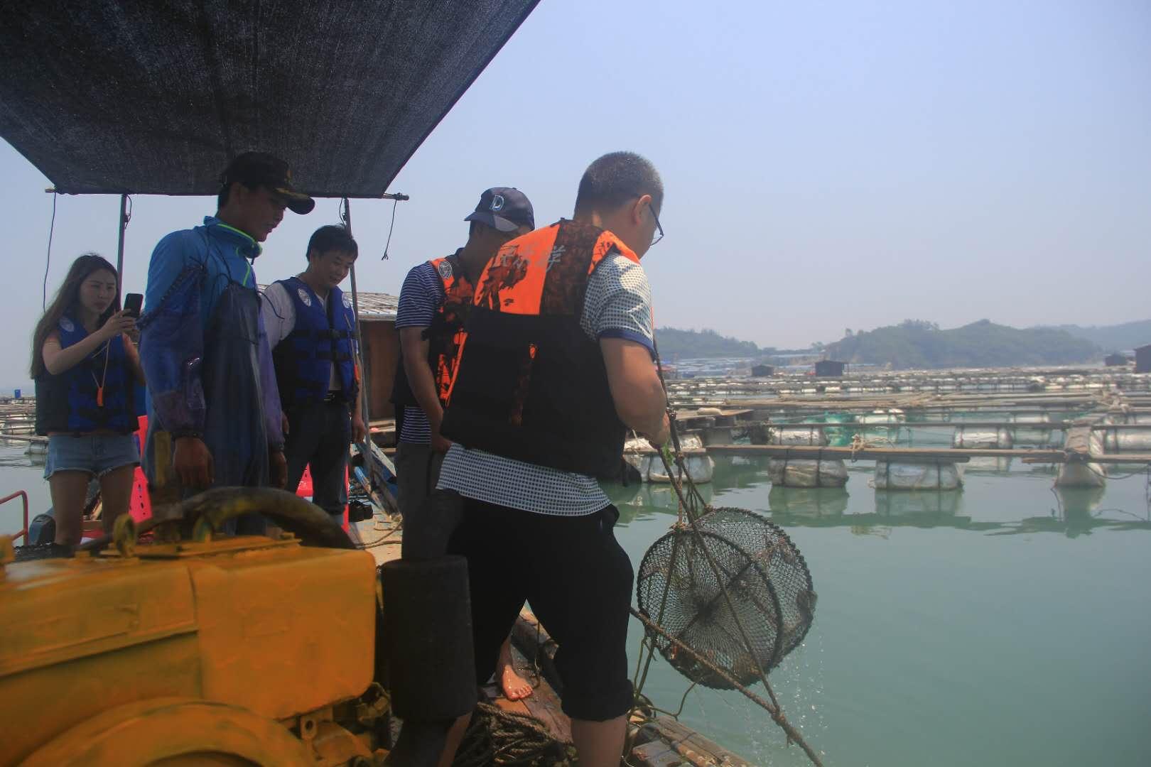 漳州东山岛岐下海钓 渔民体验海鲜收获/渔排基地观光