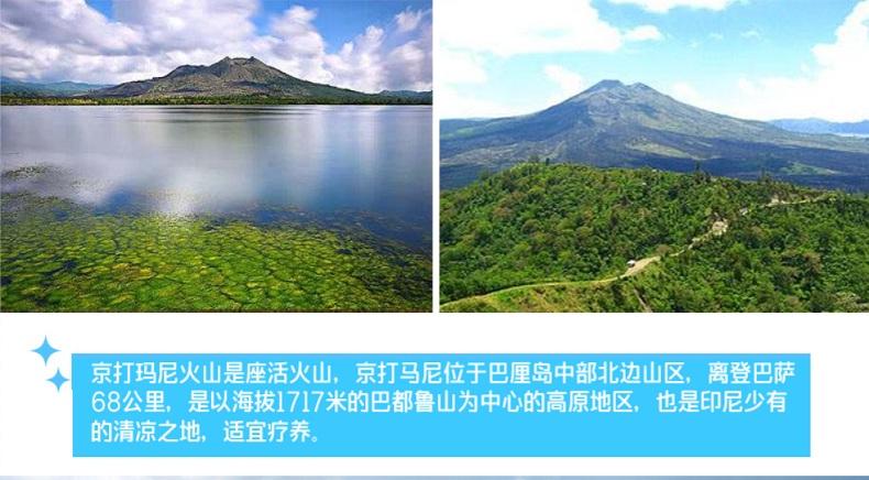 【独立团】巴厘岛圣泉寺 京打马尼火山 火山温泉 德格拉朗梯田一日游