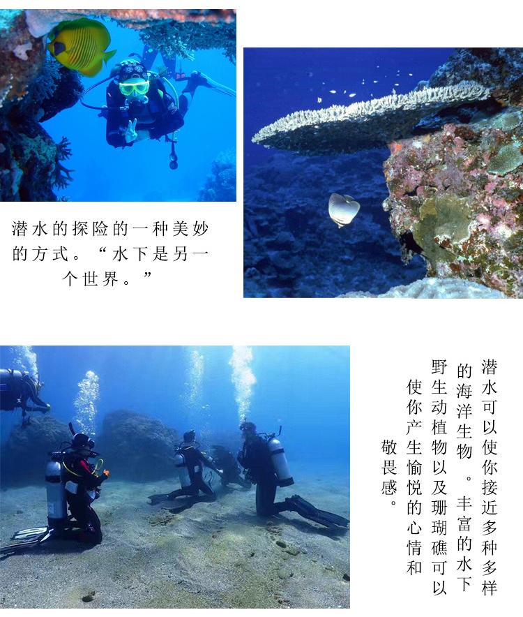 东山岛浮潜/深潜赏红珊瑚 探索海底世界(亲子游玩,与鱼儿同游)