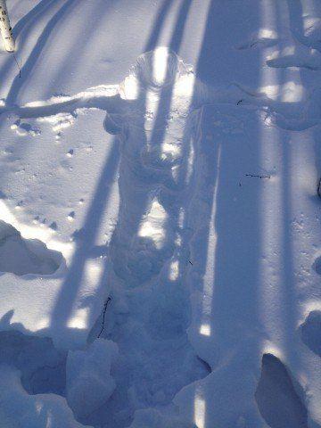 寻北之旅-哈尔滨漠河北极村v之旅攻略-哈尔滨fc通关最速游戏图片
