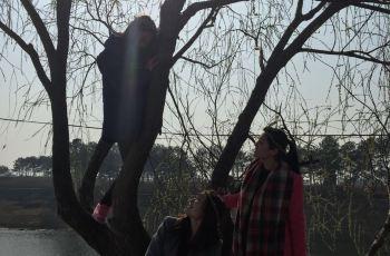 【携程攻略】襄阳青龙山熊河风景区附近景点