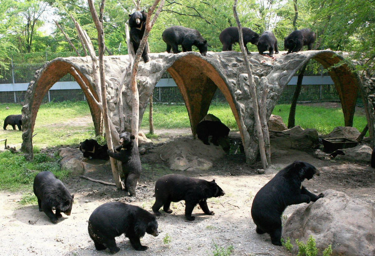 曼谷野生动物世界|array-唐郎商旅网