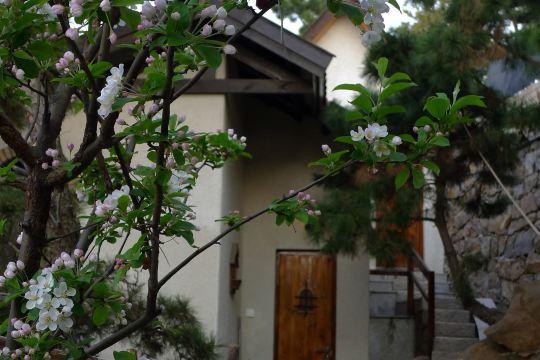 青岛崂山城堡民宿