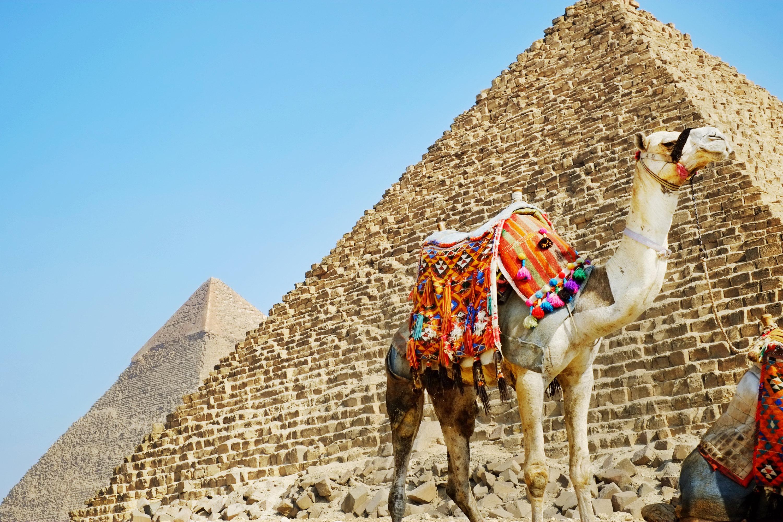 金字塔电影_埃及开罗 胡夫金字塔 狮身人面像 埃及博物馆 哈利利市场包车一日游