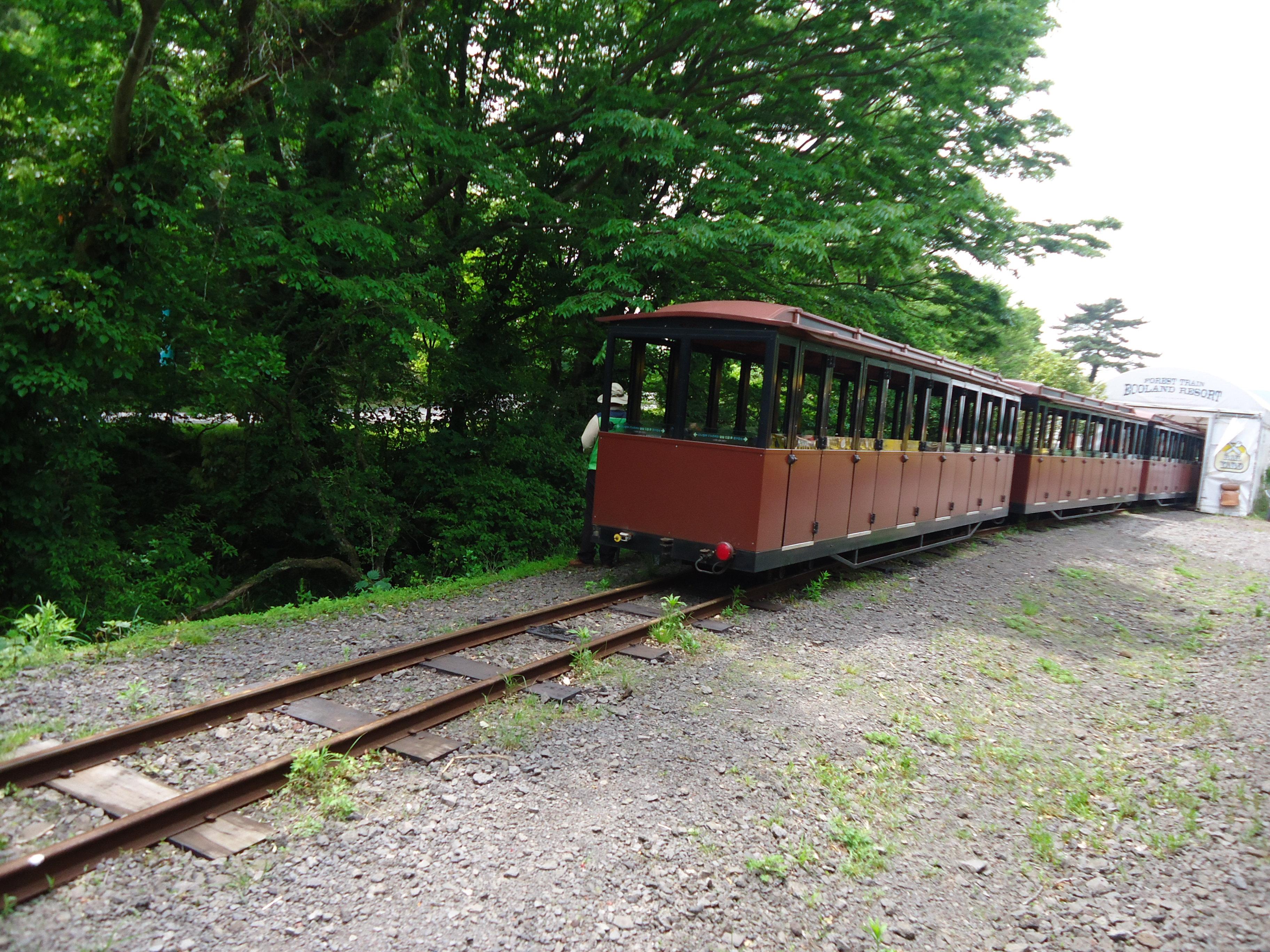 随手拍之ecoland森林小火车