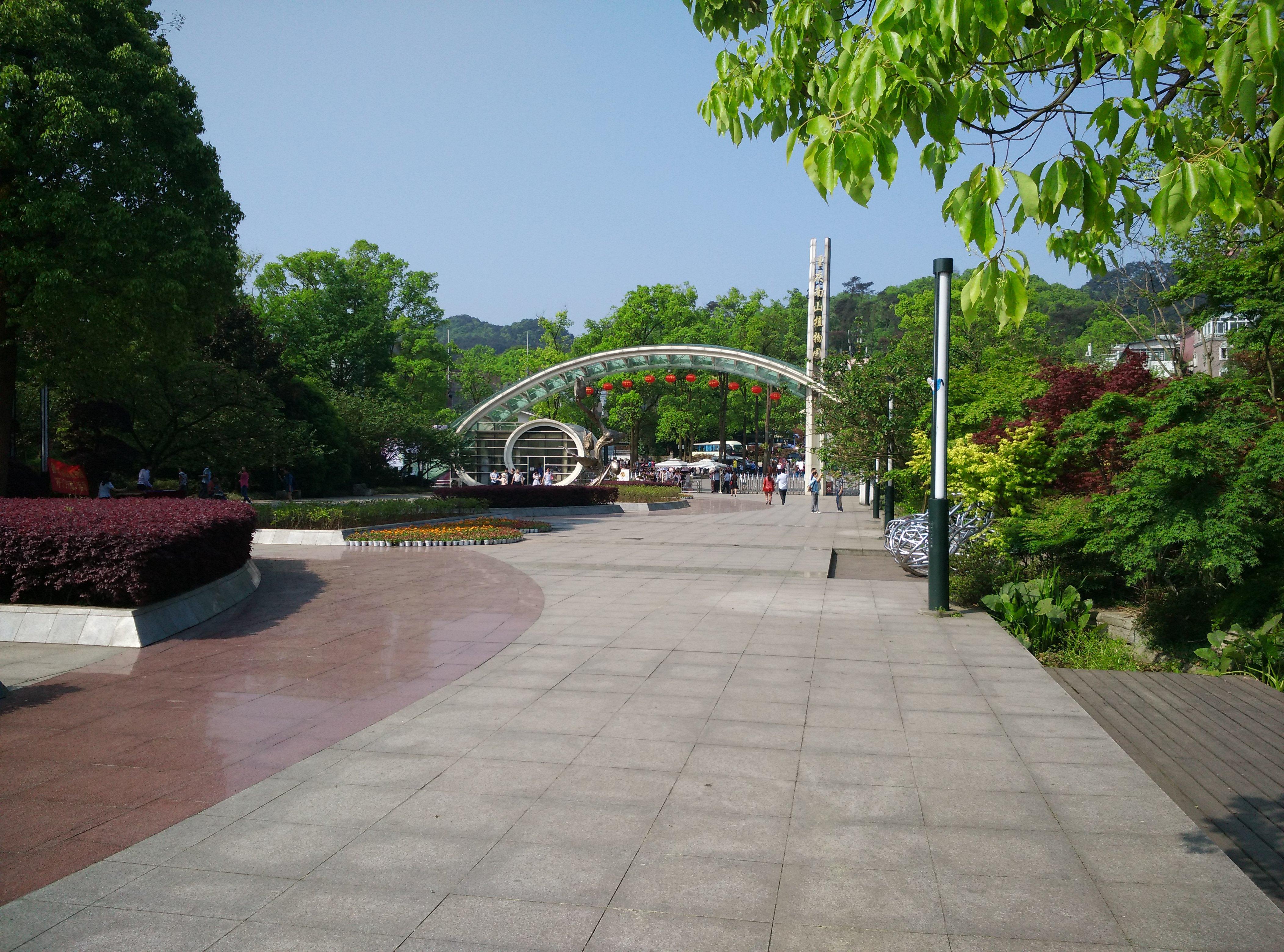 清明游重庆南山植物园