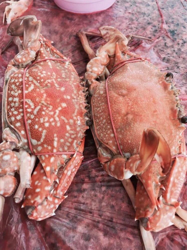 游泳上岸中午的海鲜大餐,还是不好吃,命苦的我们 tawaen beach 远