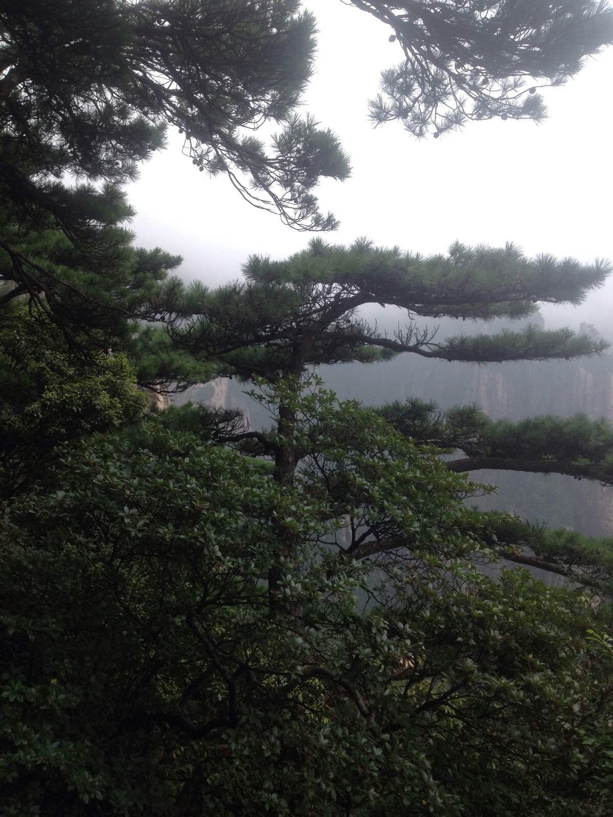 黄山,宏村,千岛湖