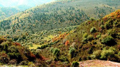 互助北山国家森林地质公园