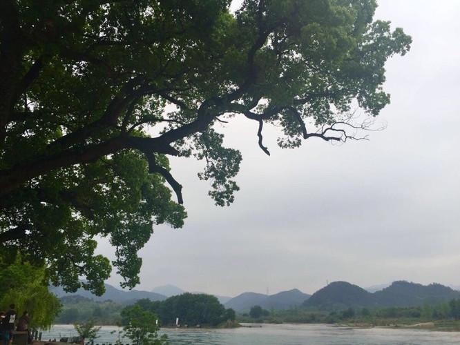 杭州、丽水高铁三日自由行-丽水攻略攻略【携元阳游记自驾图片