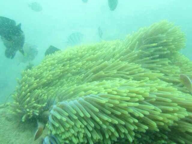 蜜月旅行之巴厘岛