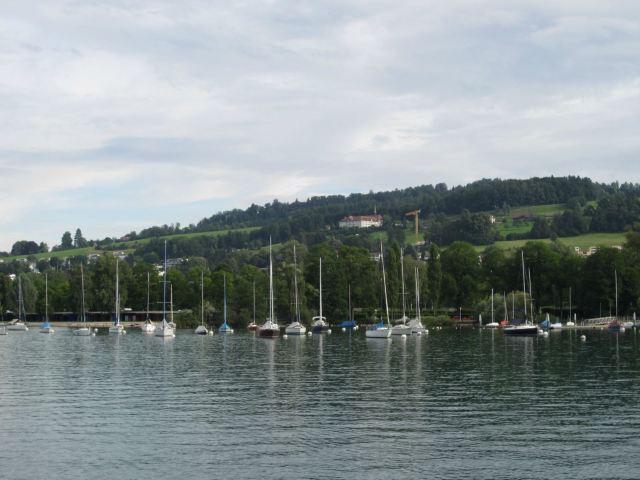 美丽的琉森湖,湖水清澈透明,岸边白帆点点