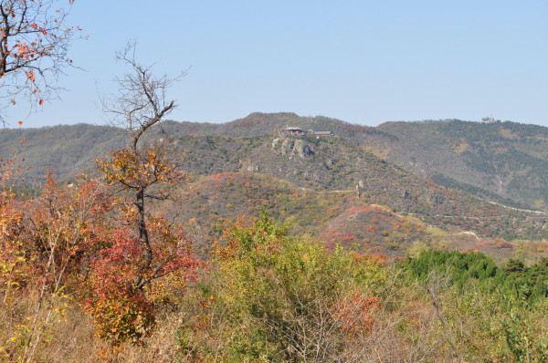 到西山森林公园看香山的红叶