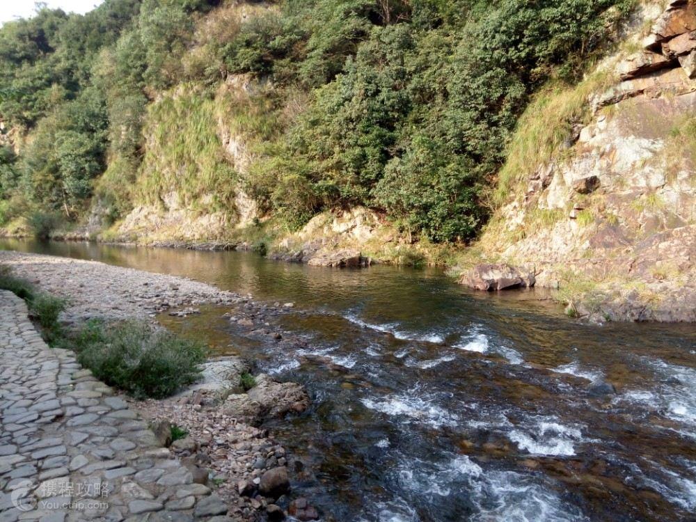 汀溪防护林场地图