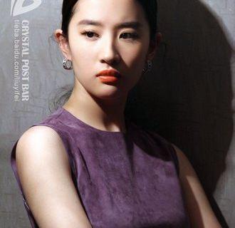 刘亦菲高清一寸正脸素颜照片