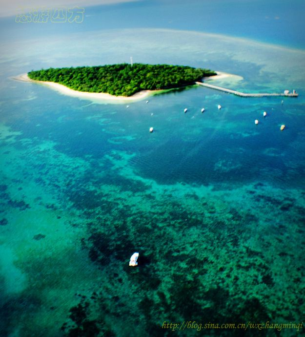 【澳大利亚】视觉盛宴:搭水上飞机俯瞰大堡礁