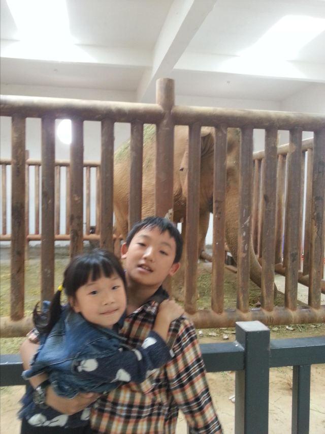 贵阳野生动物园一日游