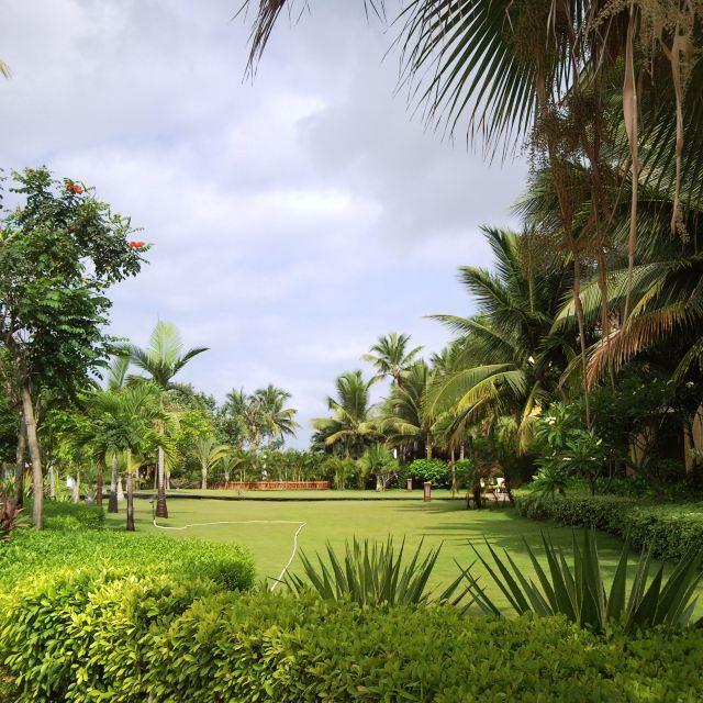 在高大的园林树木间,点缀着一些很有意思的雕塑和热带植物,还有一些