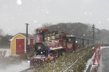 【携程攻略】济州岛ecoland英式森林小火车附近景点