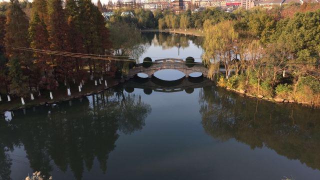 在文峰公园内还设有南通地区规模最大的动物园