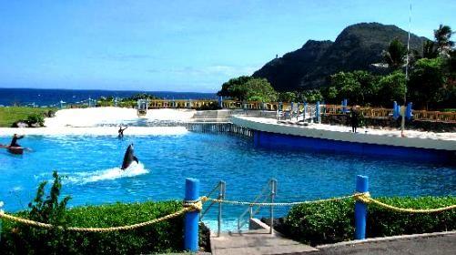夏威夷海洋生物公园门票,檀香山夏威夷海洋生物公园