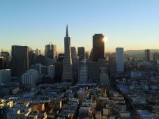 柯伊特塔-旧金山-西溪老翁