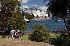 皇家植物园-悉尼-小民2011