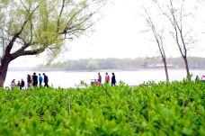 南湖公园-长春