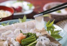 九州美食图片-河豚