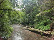 吉林龙湾群国家森林公园-辉南-M37****5813