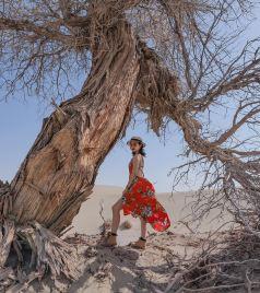 额济纳旗游记图文-苍天般的阿拉善,藏着一片五彩斑斓的世界