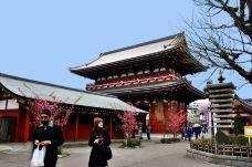 天王寺动物园-大阪-M33****0868