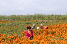 扁都口生态休闲旅游区-民乐-chenweiwen