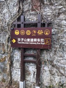 天子山索道-张家界-陌染MM