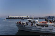渔人码头-大连
