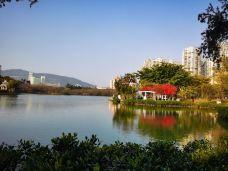 南湖公园-长春-吃货战象