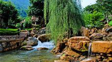丫沙底瀑布温泉-个旧-M29****5227