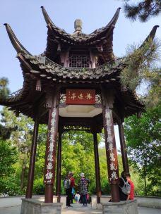 茱萸湾风景区-扬州-波斯王子