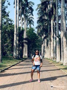 Aburi Botanical Gardens-阿克拉